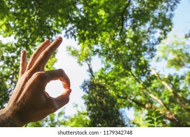 Agree hand sign in the nature