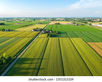 Agricolture farms flat land. Spring and summer colors
