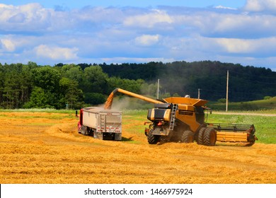 Agricultural background and rural life at summer concept. Scenic rural landscape with combine harvester on the field filling up truck with grains. Harvest concept.