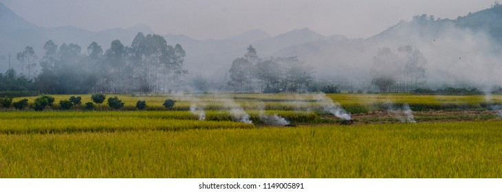 Agricultural Burning in mainland china