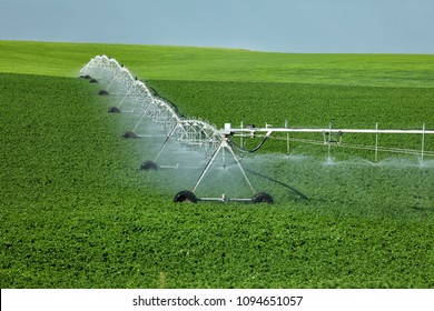 An agricultural center pivot sprinkler used to irrigate a potato field in the fertile farm fields of Idaho.