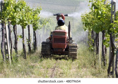 """Agricultural chemical treatments in spring vineyard """"Oltrepo Pavese"""", Italy."""