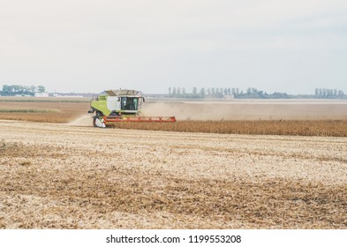 Agricultural combine harvests soybeans in the field.