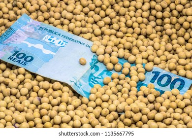 Agricultural concept, soybean at 100 Brazilian Real banknote