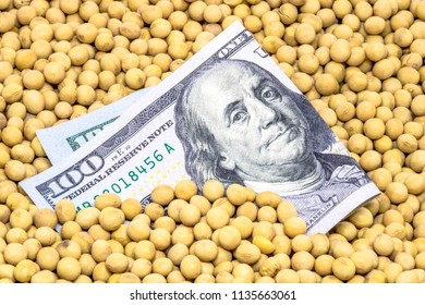 Agricultural concept, soybean at 100 dollar banknote