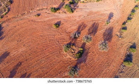 Agricultural dry land - top view