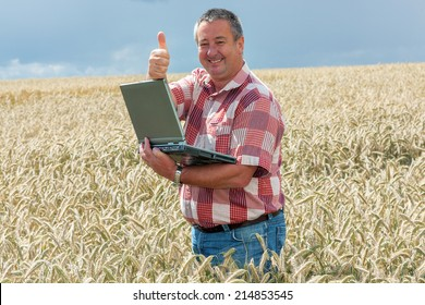 Agricultural engineer at the field inspection