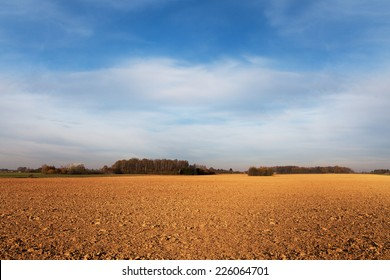Agricultural field in autumn.