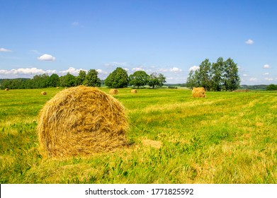 Agricultural field with harvested hay and stacks in summer. Haystacks