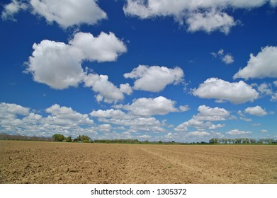 agricultural field in springtime
