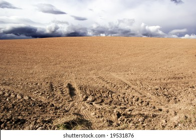 agricultural field with tire tracks