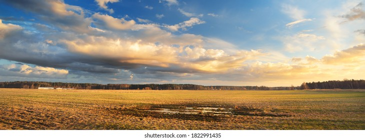 Agricultural field under the colorful sunset cumulus clouds after the rain, golden sunlight. Dramatic cloudscape. Idyllic rural landscape. Picturesque panoramic scenery
