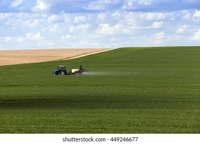 agricultural field where the green grass is treated with pesticides
