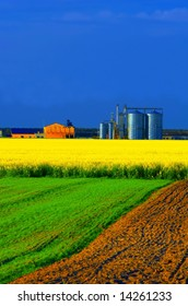 Agricultural industry facilities, summer landscape.
