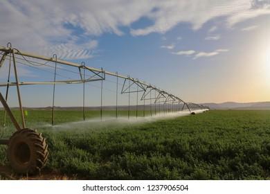 Agricultural irrigation machine in arabic farm