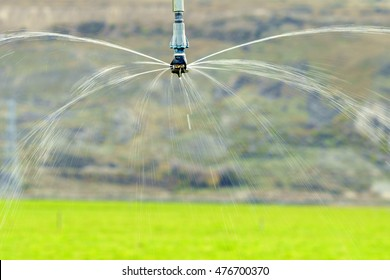 Agricultural irrigation sprinkler at work over grass field in New Zealand.