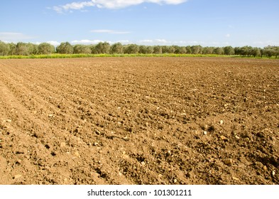 agricultural land plowed