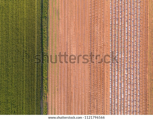 Agricultural landscape, aerial shot of an arable crop field. Arable land is the land under temporary agricultural crops capable of being ploughed and used to grow crops.