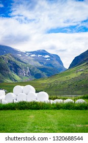 Agricultural landscape with straw packages on field. Cereal bale of hay wrapped in plastic white foil, summer in norwegian country.