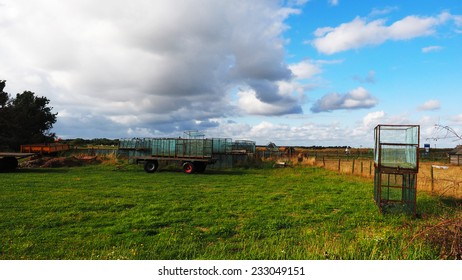 Agricultural landscape of the wadden island Texel
