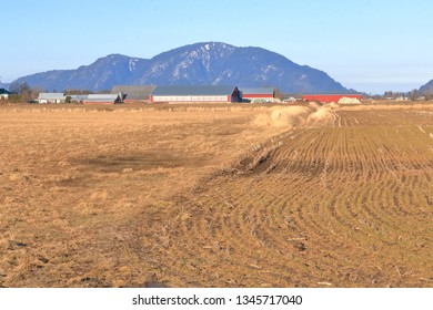 An agricultural landscape and work during the early springtime is embedded in the fields where have the grassland has been tilled for replanting.
