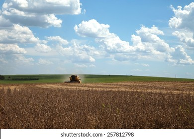 Agricultural machine harvesting soybean field. - Mato Grosso State - Brazil