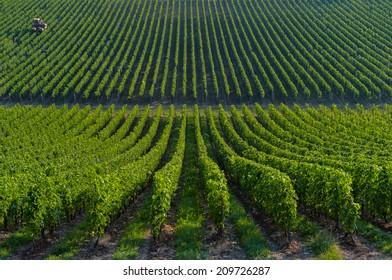 Agricultural machine in the vineyards-Landscape-Vineyard south west of France, Bordeaux Vineyard