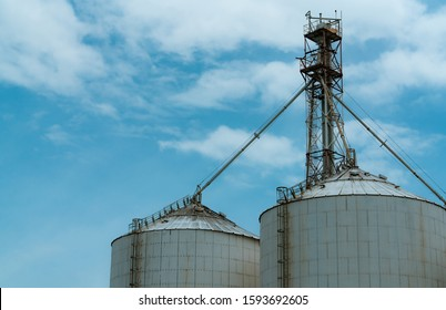 Agricultural silo at feed mill factory. Silo for store and drying grain, wheat, corn at farm. Agricultural manufacturing. Tank for store seed. Grain stock tower. Agriculture industry. Farm management.