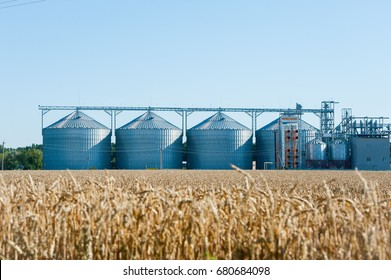 Agricultural Silo, plantations. Set of storage tanks cultivated agricultural crops processing plant. Building Exterior, Storage and drying of grains, wheat, corn, soy, hay