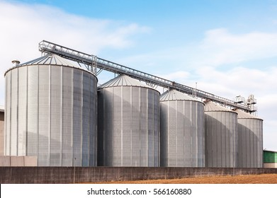 Agricultural Silos. Building Exterior. Storage and drying of grains, wheat, corn, soy, sunflower against the blue sky with white clouds
