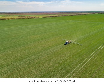 Agricultural tractor sprays the crop field with chemicals. Aerial drone photo.