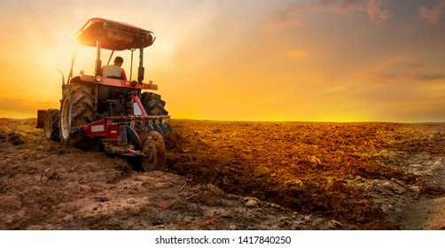 agriculture concept by The tractor is preparing the soil for planting over sunset sky background