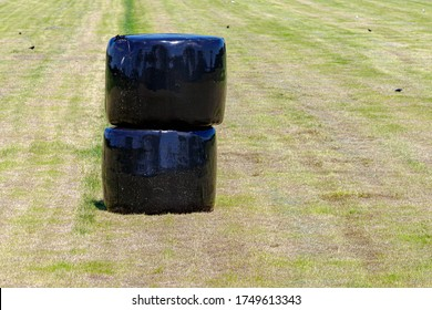 Agriculture concept, Countryside landscape with black plastic wrapped hay bales on green meadow, Harvest straw bales in a field, Keep to feed cows, horses or another animals in the farm in the winter.