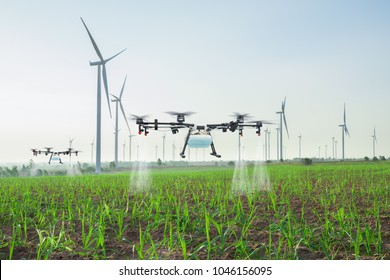 Agriculture drone fly to spray fertilizer on the sugarcane fields, Smart farm 4.0 concept