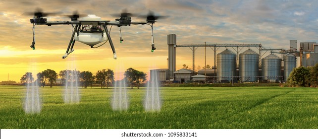 Agriculture drone flying on the green rice fields with Agricultural Silos in the background.