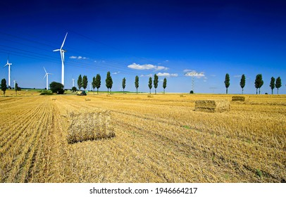 Agriculture farm field haystack harvest. Haystack harvest agriculture farm field scene. Agriculture farm field haystacks