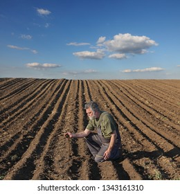 Agriculture, farmer or agronomist examining quality of soil in field, and pouring it from hand
