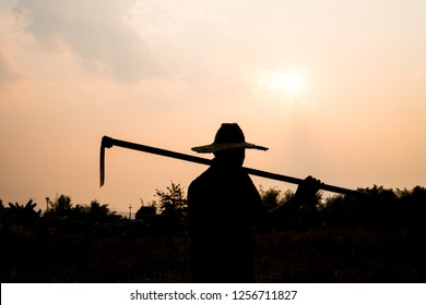 Agriculture farmer life Concept : Black silhouette of a worker or gardener holding spade is digging soil at sunset light