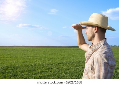 Agriculture. Farmer overlooking the field. Agronomy, husbandry concept. Agronomist.