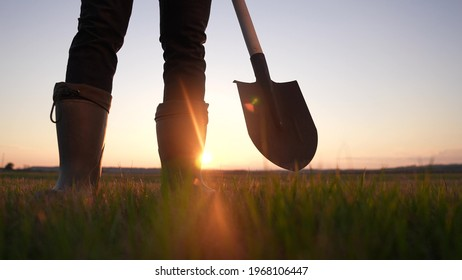 agriculture. farmer with a shovel walk in the field. agriculture business harvesting of a farmer man with shovel a walk to work in the field. business soil sun natural roducts harvest