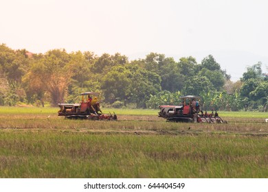 agriculture farmland,tractor with plough ploughing a soil field