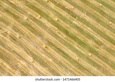 Agriculture field from above. Aerial view on harvest field with hay bales. Harvesting time