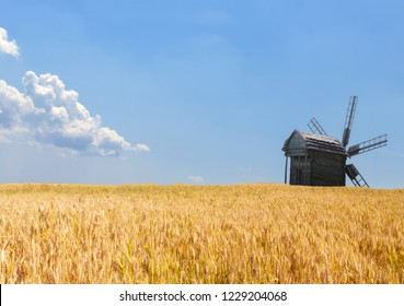agriculture field old windmills wheat harvest