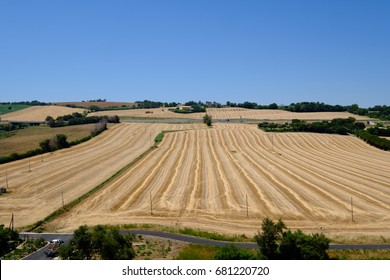 Agriculture Field, Valley
