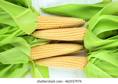 Agriculture.The first harvest. Village. Summer.several cobs of sweet corn with husk and  without husk on the light wooden table.
