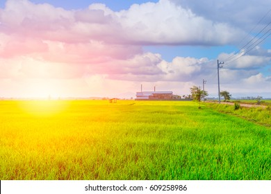 Agriculture green field with industry power plant.