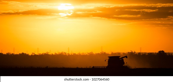 Agriculture machine harvesting crop in the field.