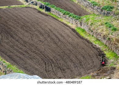 Agriculture, monk plowing field, Mount Athos