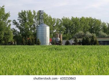Agriculture plant
