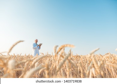 Agriculture scientist doing research in grain test field tracking data, wide shot